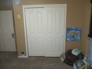 This picture shows the wall color and carpet color the best, even if it is of is mostly closet doors.
